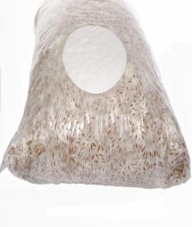 Мицелий зерновой